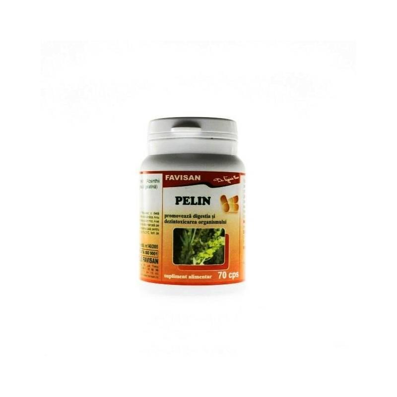 Pelinul (Artemisia absinthium)