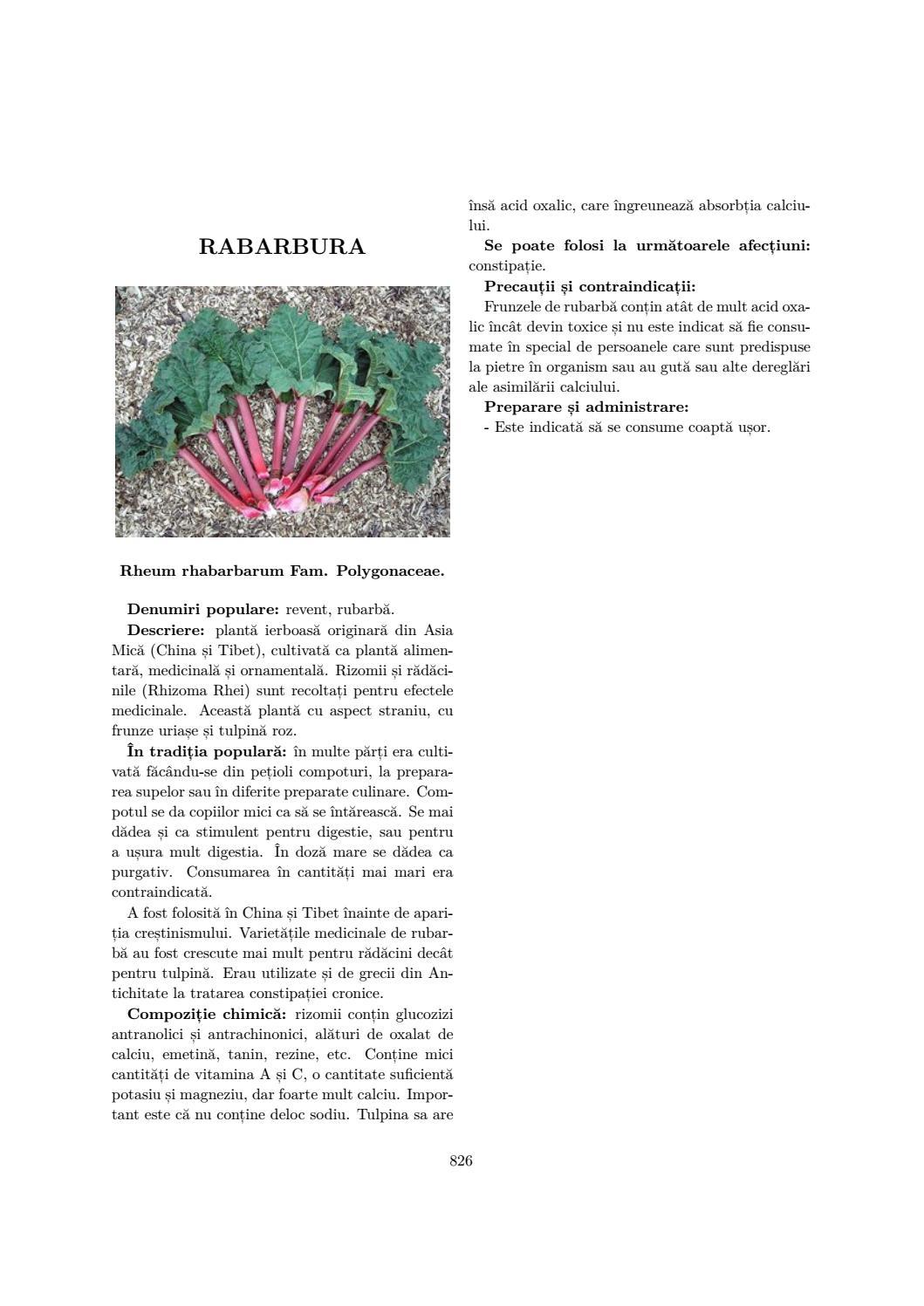 Rădăcină de brusture Proprietăți medicinale. Contraindicații - Sarcom September
