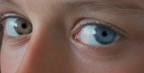 Vedere mai bună - chiar şi noaptea saui în condiţii de lumină redusă