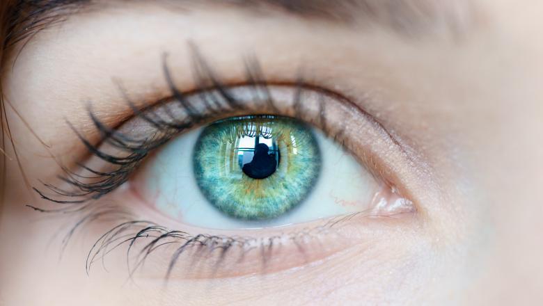 vederea ochilor plutind