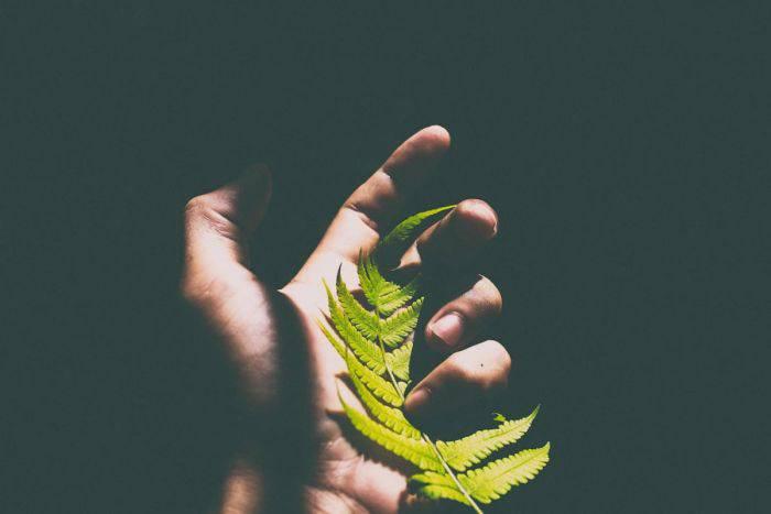tratamentul vederii mâinilor