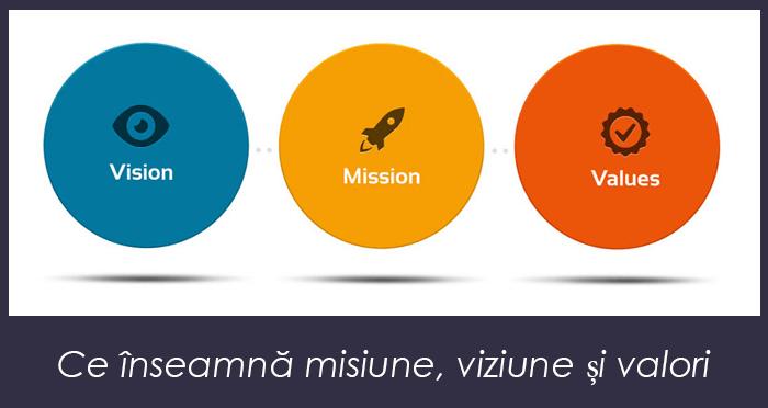 Viziunea şi Misiunea afacerii noastre - RMIG