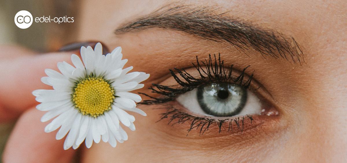 vedere uscată a ochilor care este norma viziunii