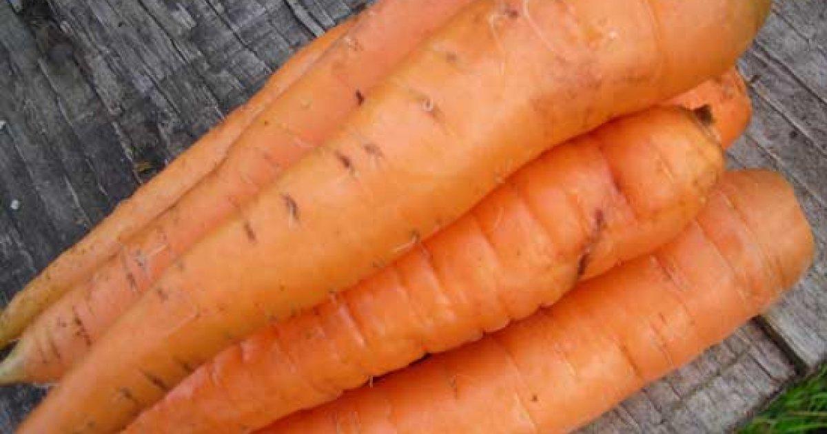 vitamine pentru legume vizuale care este vederea unei stiuci
