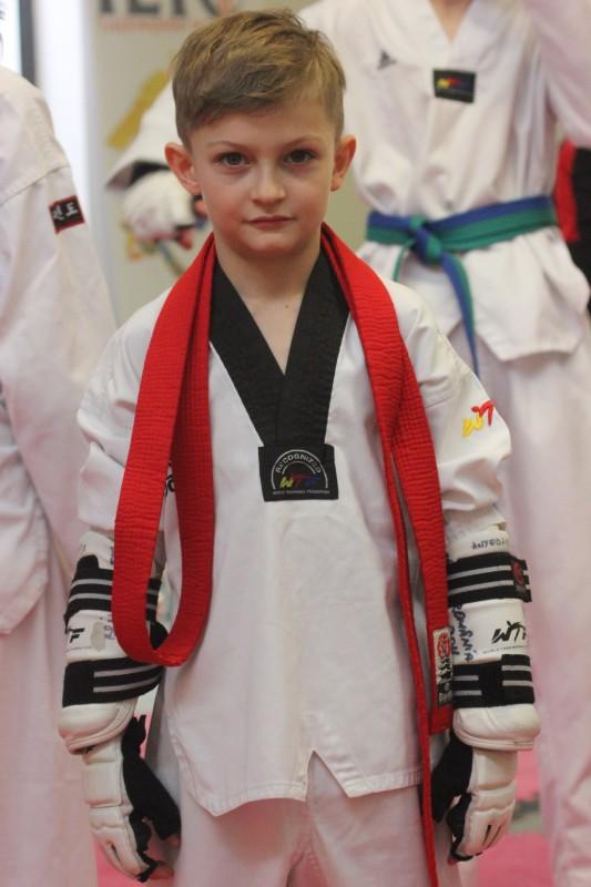 viziune și taekwondo