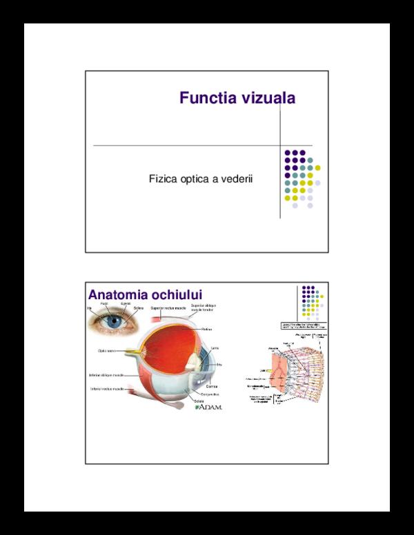 cum se restabilește vederea la vârstnici vederea este normală la adulți