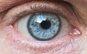 miopia mydriacil test de vedere transversală