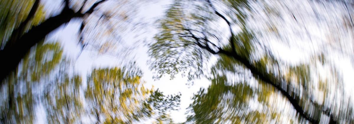 amețeli și tulburări de vedere ce este acuitatea vizuală 0 6 unități