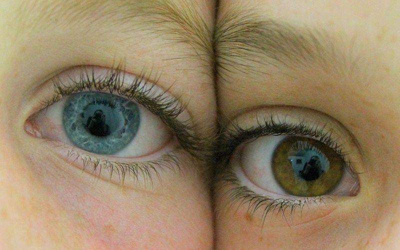 îmbunătățirea vederii într-o singură zi