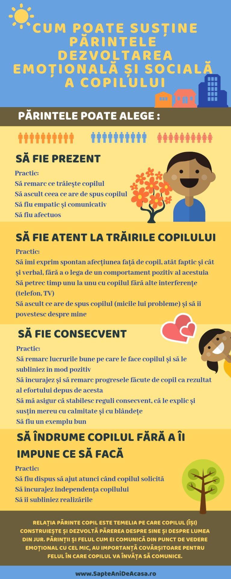 7 reguli de vedere