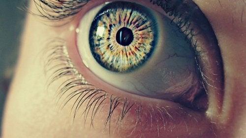 pupila dilatată