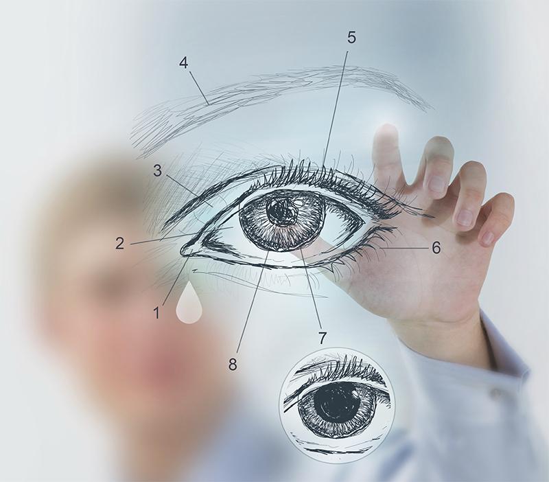 vedere uscată a ochilor viziune paling