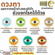 viziune plus 12 miopia severa adultos