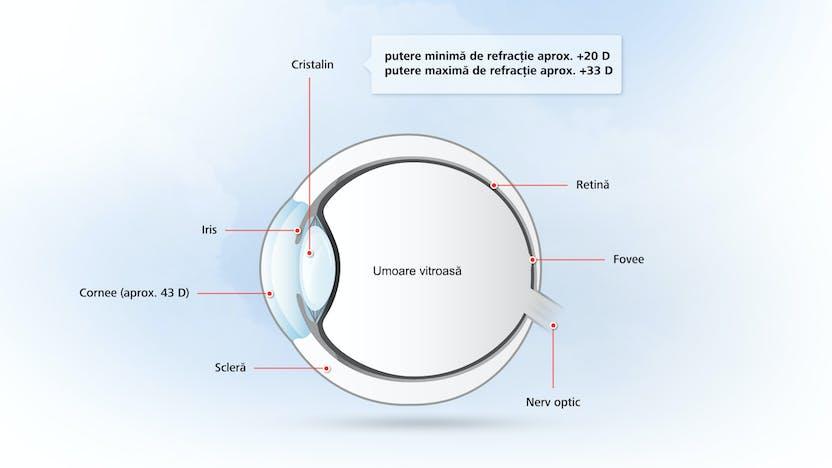 funcțiile senzoriale ale vederii sunt vederea la un ochi s-a deteriorat
