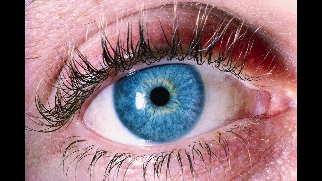 Eye Doctor Trainer - Exercises to Improve eyesight – (Android Aplicații) — AppAgg