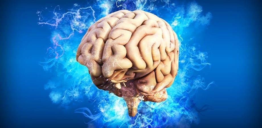 Tumorile cerebrale | scutere-galant.ro