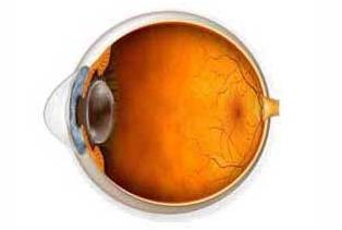 refacerea vederii după deteriorarea corneei scara viziunii umane