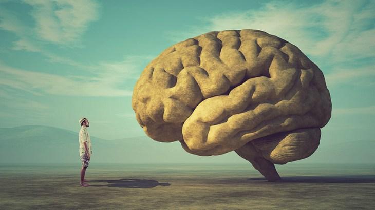 viziunea și influența creierului