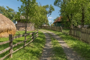 Viziuni Suita pentru Pian Nr.2 - Carmen Petra-Basacopol