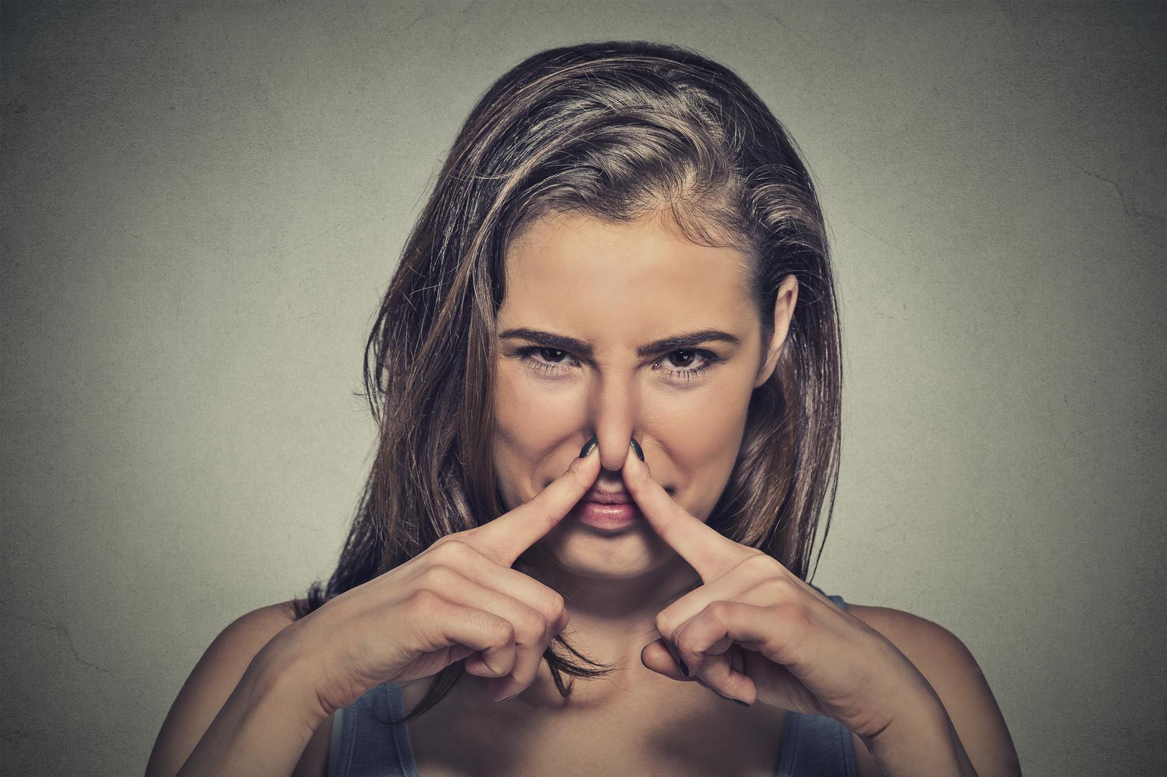vedere pentru mirosuri