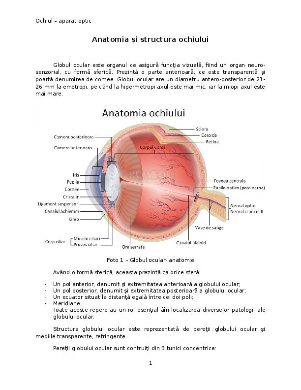 diagrama testelor oculare suspendarea vederii