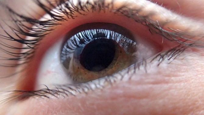 Dezlipirea de retină – Despre ochi