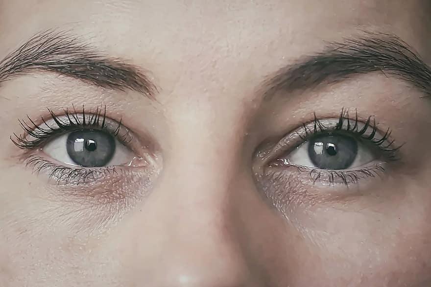 vedere ochi